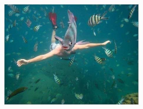 PhotobombingLvlFish