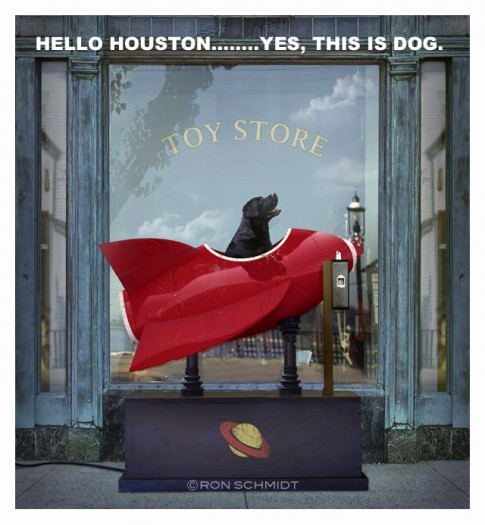 HelloHouston-YesThisIsDog