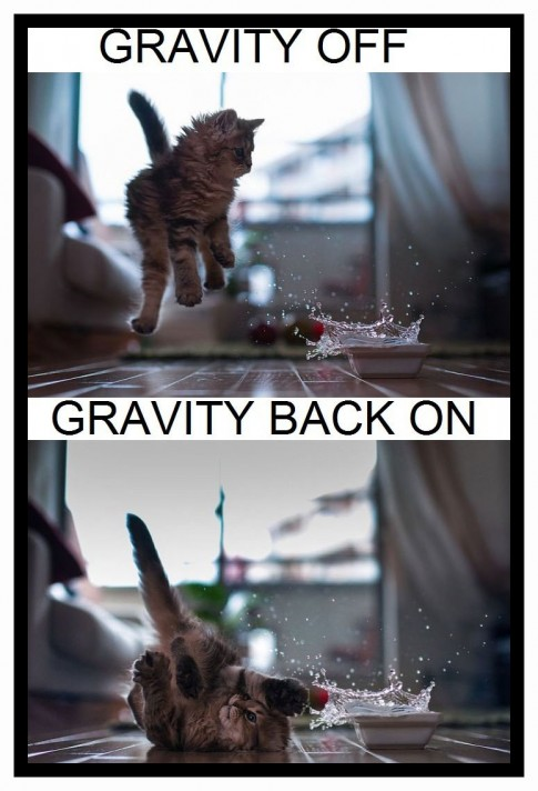 GravityKitty