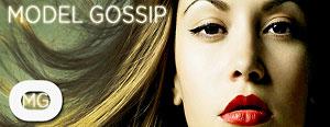 Model Gossip