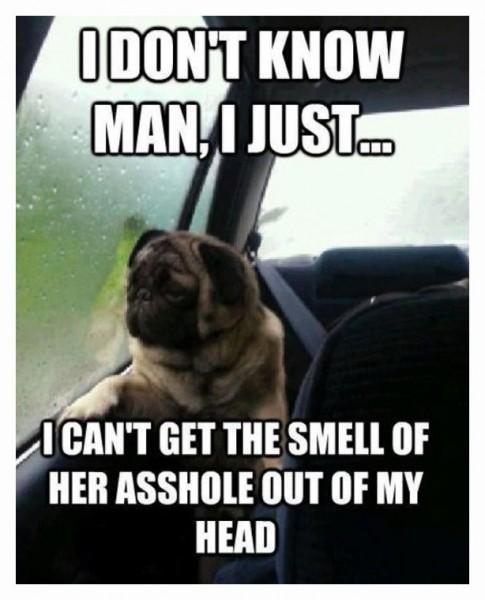 DoggieLove