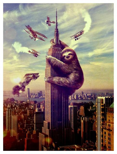 SlothKong