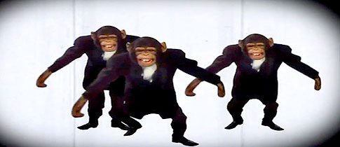 chimps-in-cyriaks-new-video-will-drive-you-to-chimpsanity