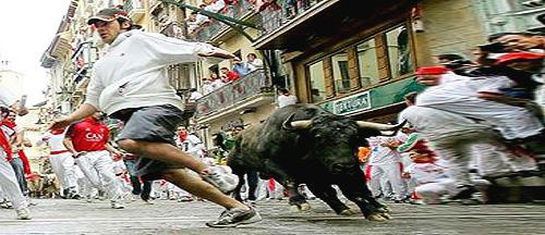 Bulls-fail-ozzyman
